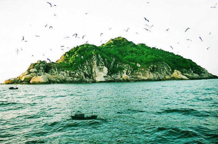 Đêm lênh đênh trên biển đi đến đảo chim ở Quảng Bình