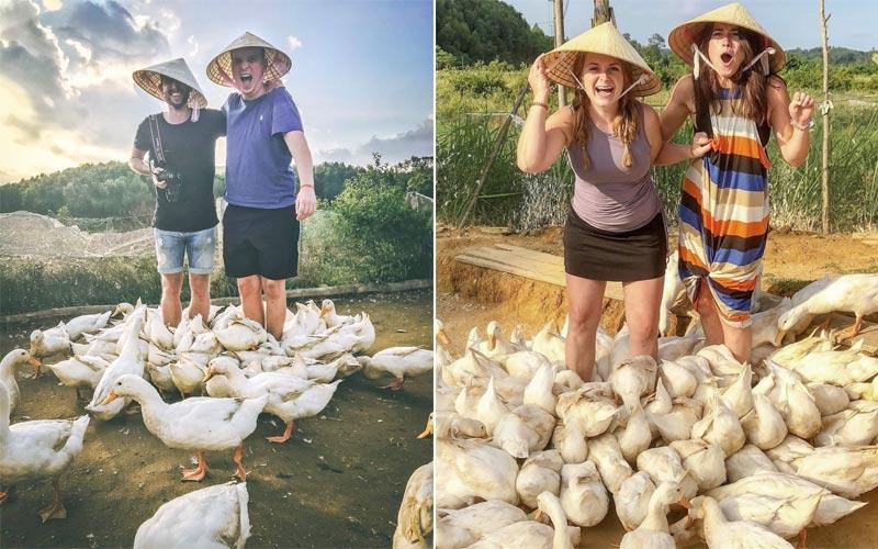Massage vịt ở Phong Nha - Tour du lịch trải nghiệm