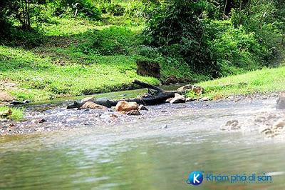 Suối nước nóng Ngư Hóa Quảng Bình
